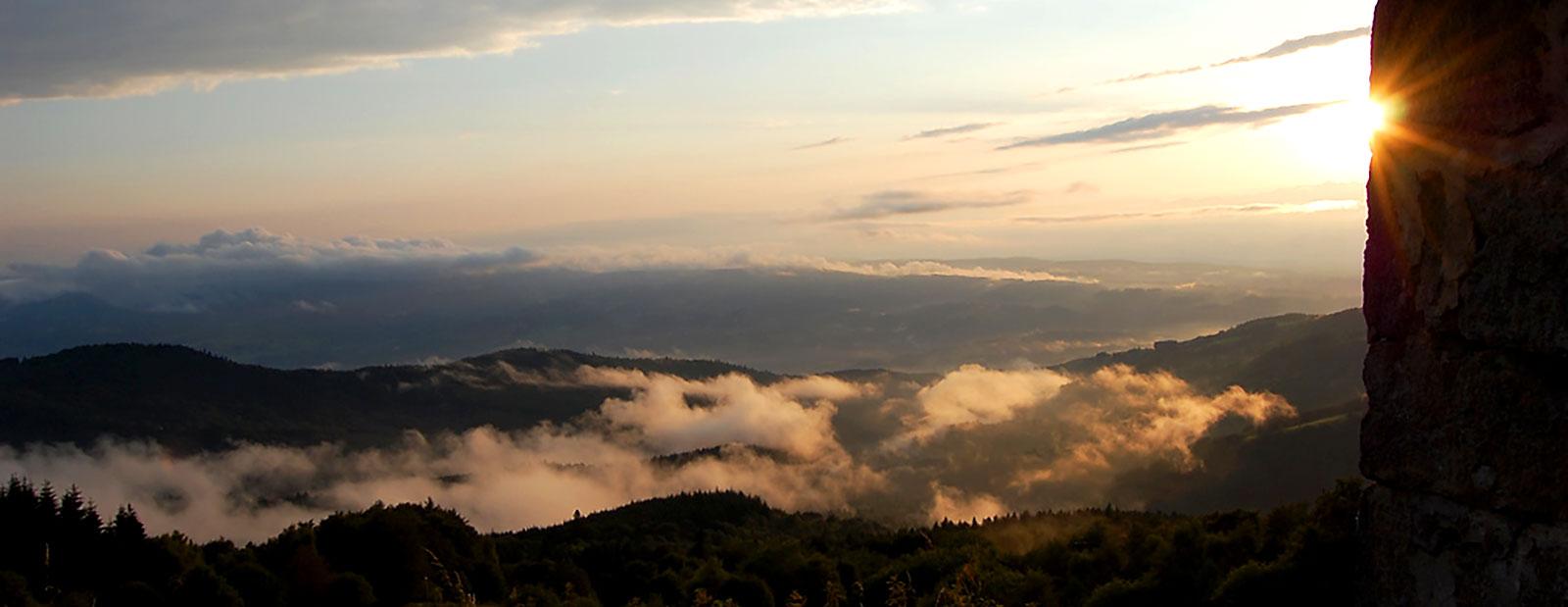 Associations des Parcs et Jardins Auvergne -Rhône Alpes